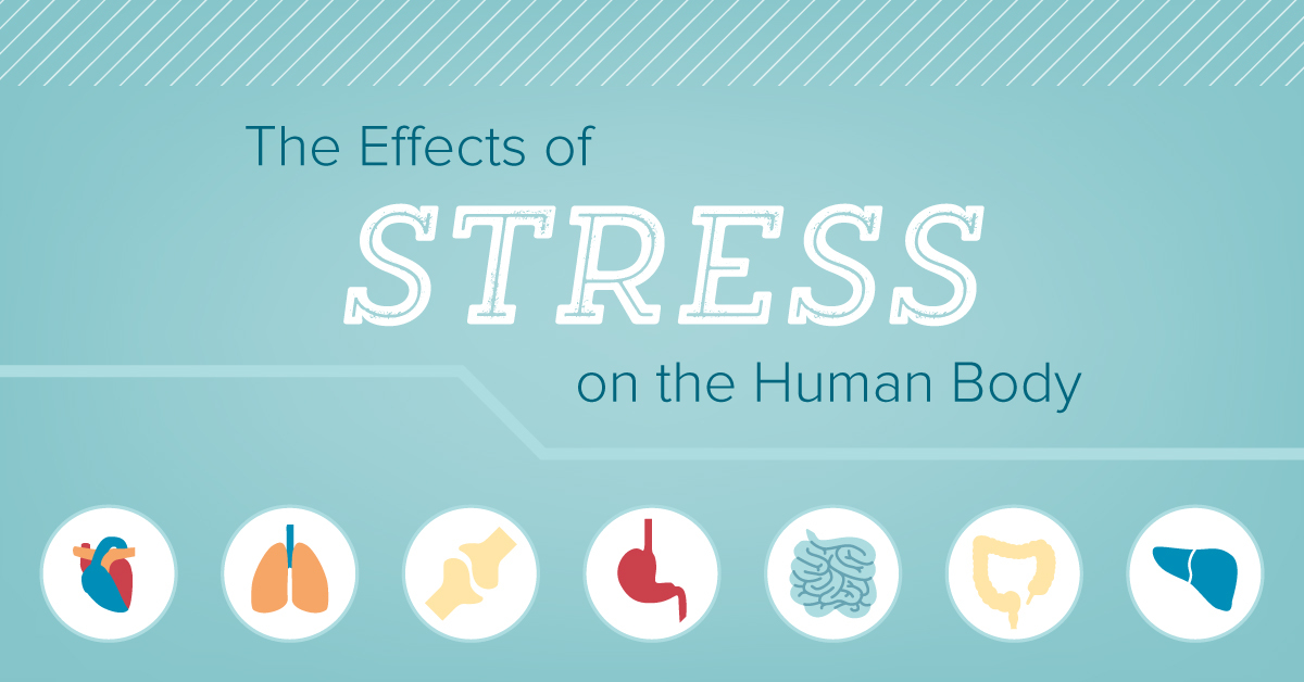 Effects of Stress on The Human Body